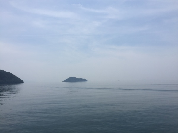 奥びわ湖健康マラソン_a0257968_17253880.jpg