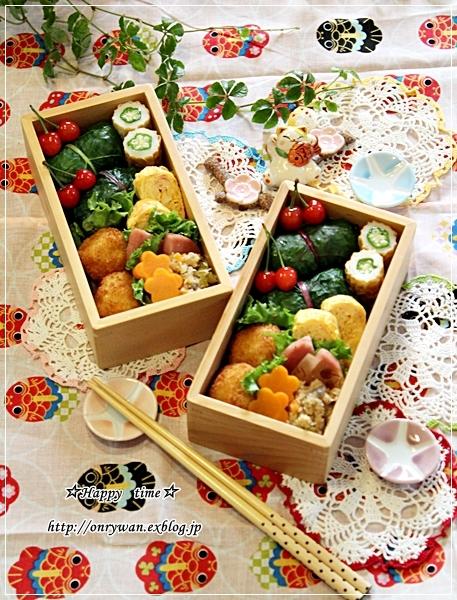 スイスチャードでおにぎり弁当と今日のわんこ♪_f0348032_18271292.jpg