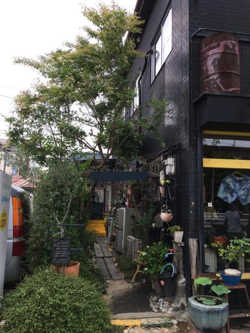 YUI\'S Garden_a0117545_14181050.jpg