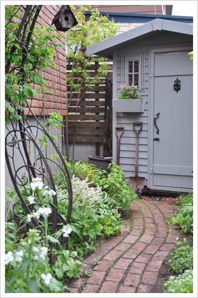*庭の様子*_e0159050_21215593.jpg