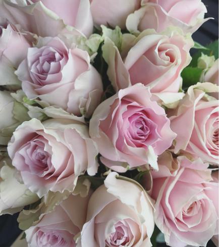 今週の花教室ボールブーケのための花たち 東京目黒不動前フラワースタジオフローラフローラ*フラワースクール_a0115684_11173461.jpg