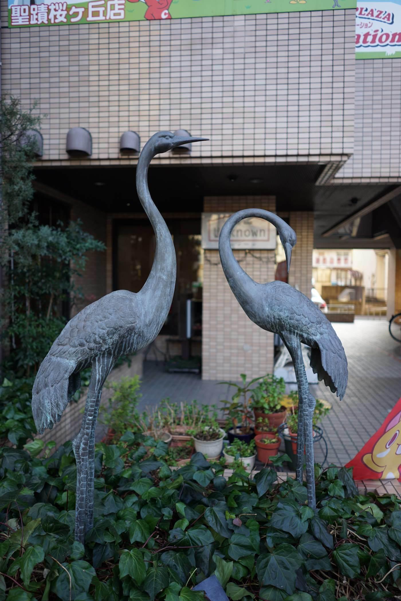 聖蹟桜ケ丘スナップ その45_b0360240_21370184.jpg