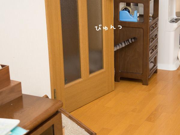 d0355333_20125786.jpg