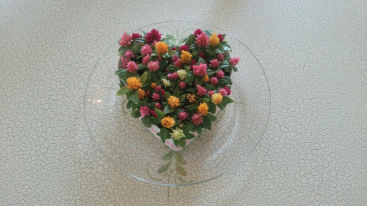 chirol HAIR さんからいただいたお花がかわいすぎる(*≧з≦)_c0350439_11105832.jpg