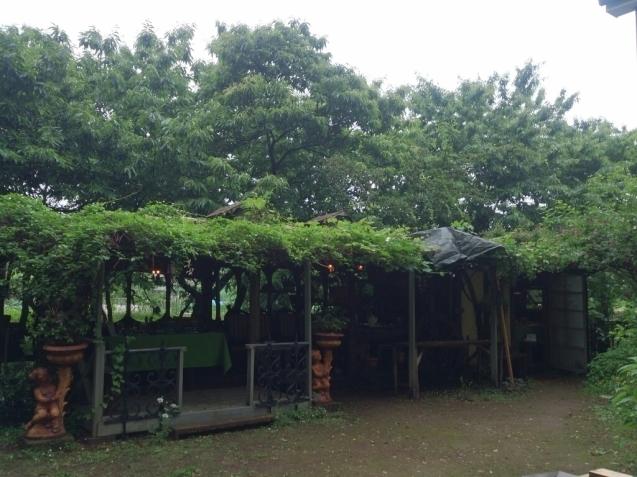青山邸での植物画展始まりました!_f0323446_23055410.jpg