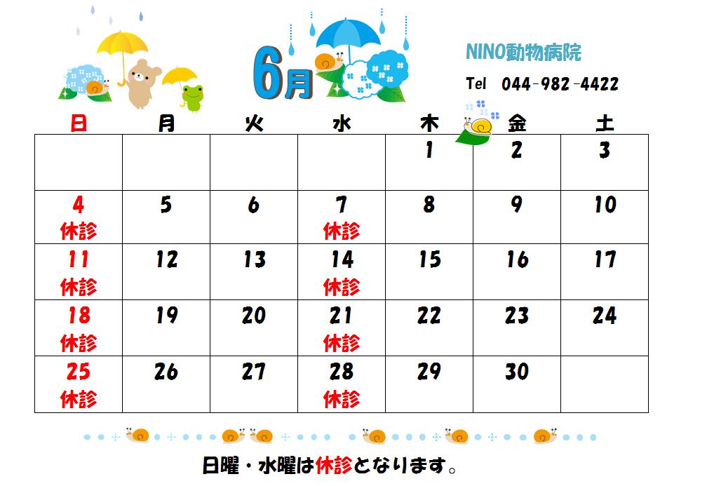 6月の診療日のお知らせ☆_e0288670_17350894.png