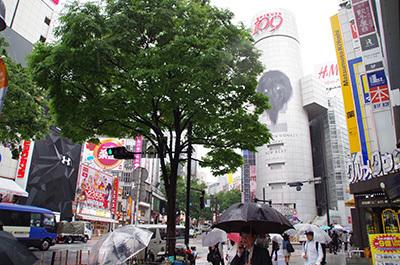 5月26日(金)今日の渋谷109前交差点_b0056983_14450650.jpg