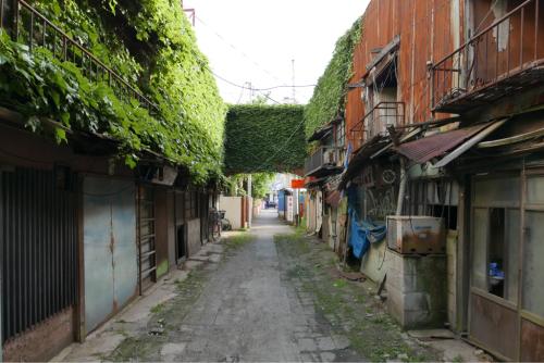 ぶらり東海道 そして天界の村_d0147406_09264385.jpg