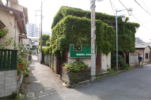 ぶらり東海道 そして天界の村_d0147406_09264558.jpg