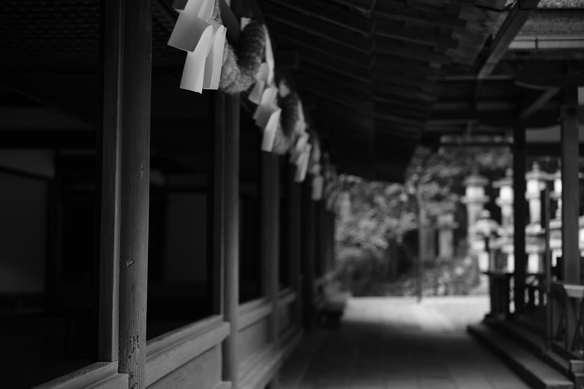 古都逍遥 Nara city #SONYα7II#RX1RII_c0065410_01222701.jpg