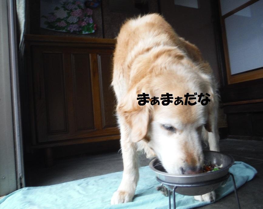 f0170713_9403611.jpg
