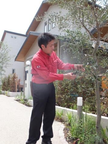 ☆家庭菜園講座☆~浦和美園Eフォレスト~_f0144724_20330084.jpg