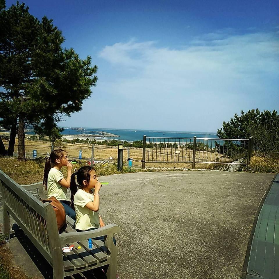 日本滞在記 海浜公園 その2_b0167736_05113492.jpg