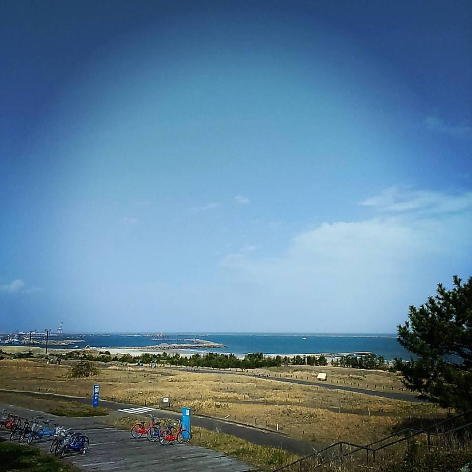日本滞在記 海浜公園 その2_b0167736_05130257.jpg