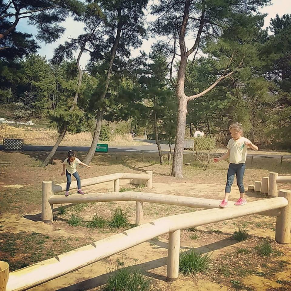 日本滞在記 海浜公園 その2_b0167736_05182698.jpg