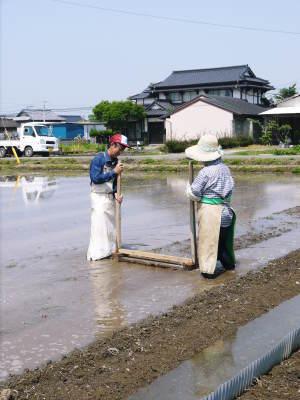 七城米 長尾農園 美しすぎる苗床を作り、よーいドン!でスタートです!_a0254656_18061352.jpg