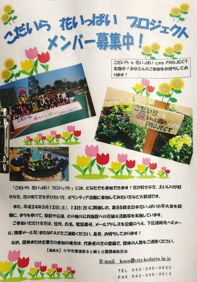 小平駅南口ロータリー花壇の花植え_f0059673_22180376.jpg