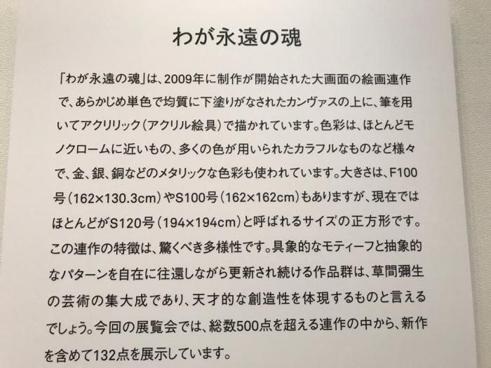草間彌生展_e0233674_10083798.jpg