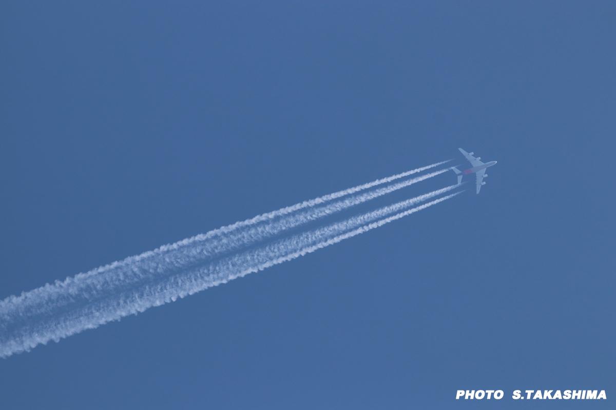 アシアナ航空エアバスA380_b0368378_19240644.jpg