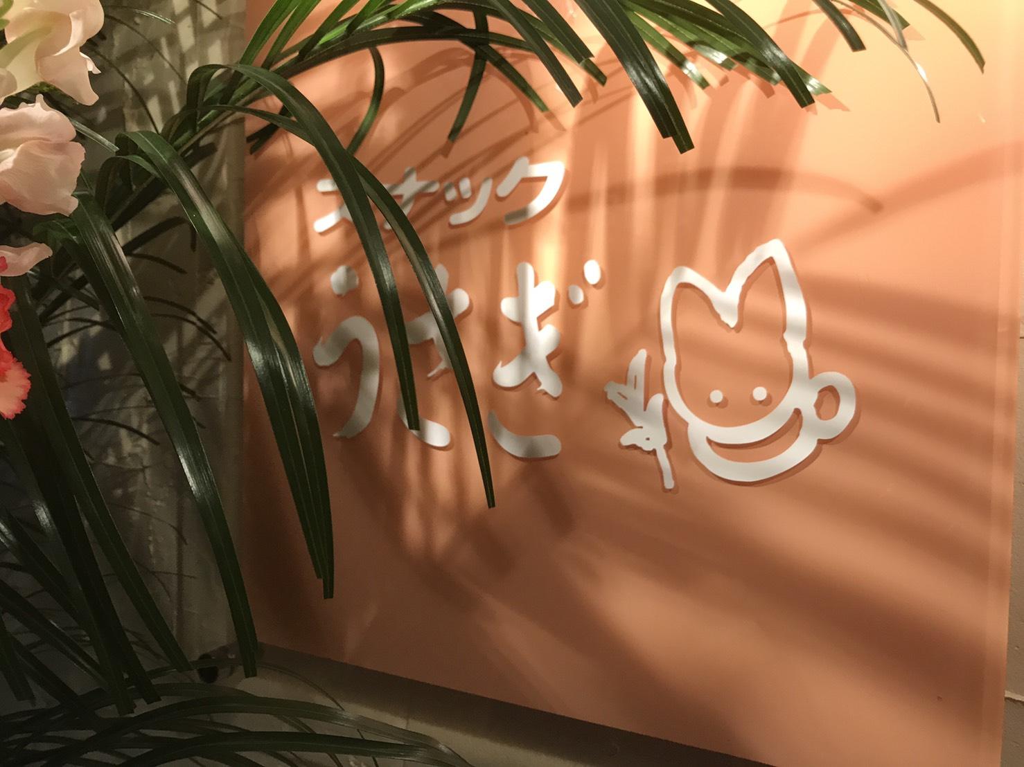 5月28日(日) 日曜日の臨時ひとログ(´▽`) ランクル・ハイエース・アルファード取り揃え☆ミTOMMY_b0127002_18303580.jpg