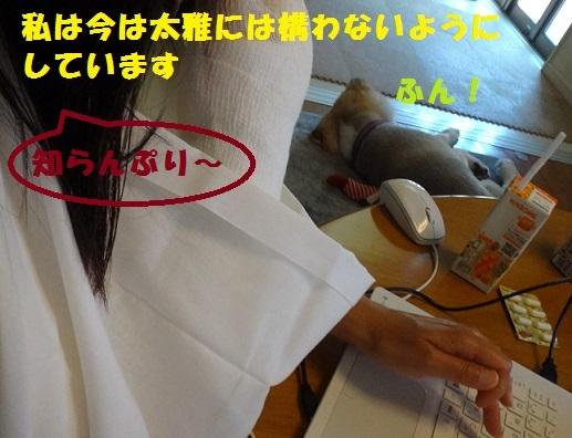 f0121712_17111641.jpg