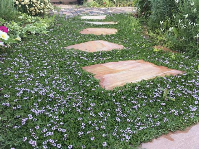 エクステリア&ガーデンのリフォーム相談