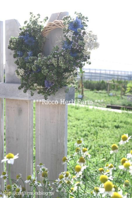 Ricco Herb Farm_e0348754_07450548.jpg