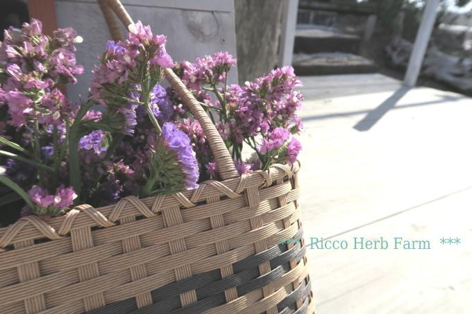 Ricco Herb Farm_e0348754_07522960.jpg