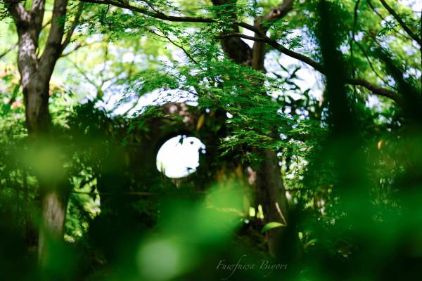 京都 大山崎美術館 **_d0344864_23035468.jpg