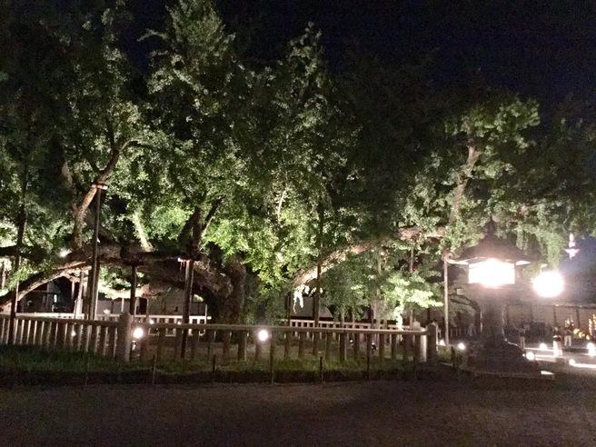 西本願寺のライトアップ_f0064017_233887.jpg