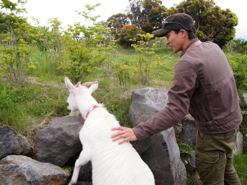 富士山&ジンギスカン ツーリング レポート_d0100125_10333584.jpg