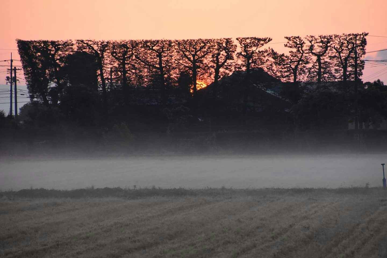 出雲の風景「朝霧」_c0124528_16472839.jpg