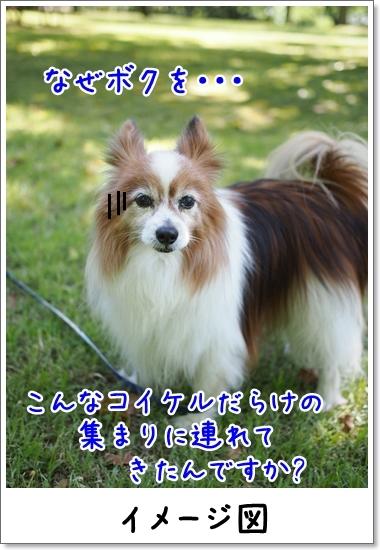d0013149_00332015.jpg