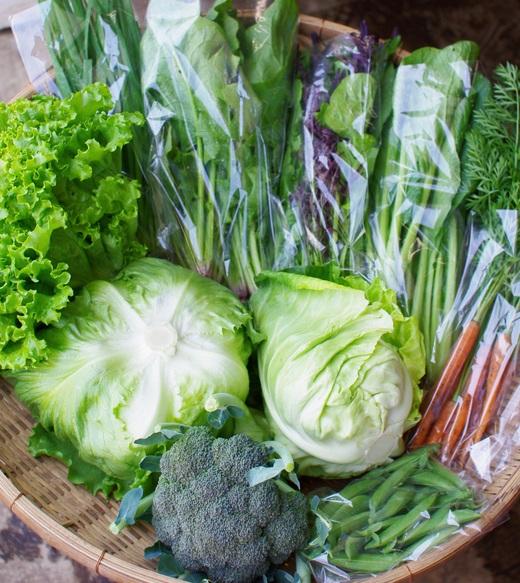 今週の野菜セット(5/30~6/3着)_c0110869_1239968.jpg