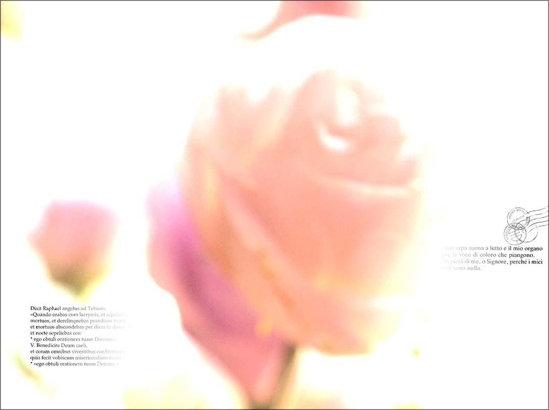 f0198771_23563136.jpg