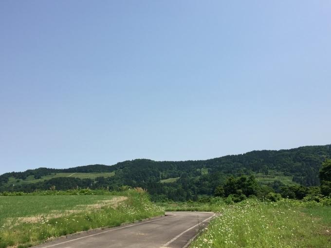 小学生田植え体験_d0182179_17561360.jpg