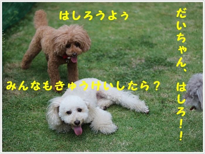 b0175688_23150440.jpg
