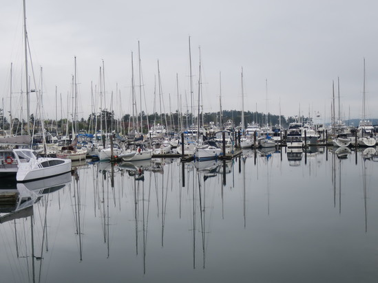 ヴィクトリアひとり旅☆Sidneyという小さな港町_c0212604_22354097.jpg