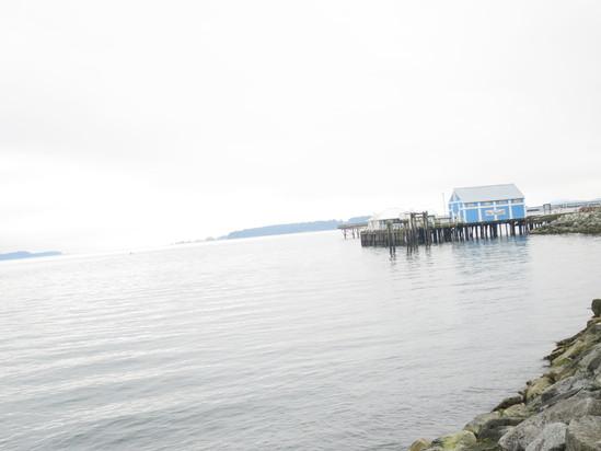 ヴィクトリアひとり旅☆Sidneyという小さな港町_c0212604_2364893.jpg