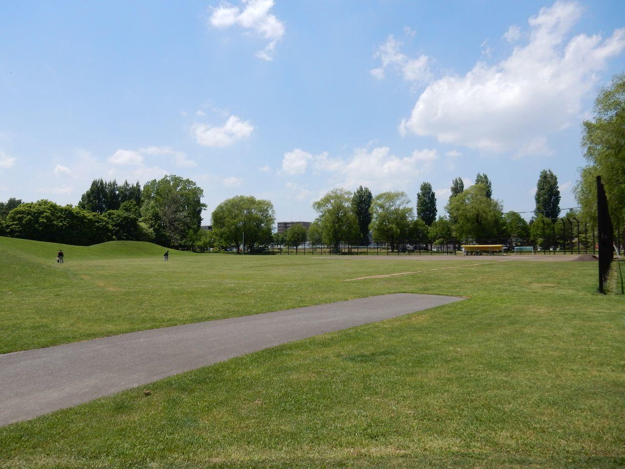 初夏の伏古公園_c0025115_21451028.jpg