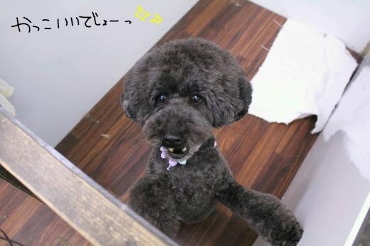 カラオケ!_b0130018_02142529.jpg