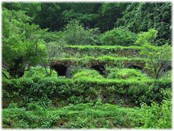 温泉津から石見銀山へ(追記)_d0221430_21162120.jpg