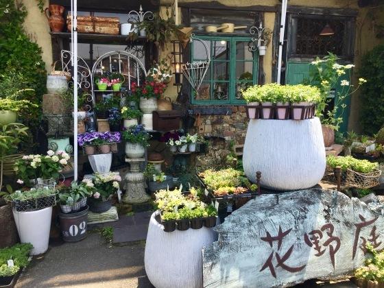 花フェスタ記念公園 モネの池_b0132338_14223108.jpg