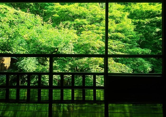 そうだ、京都に行こう!!_a0272765_18001745.jpg