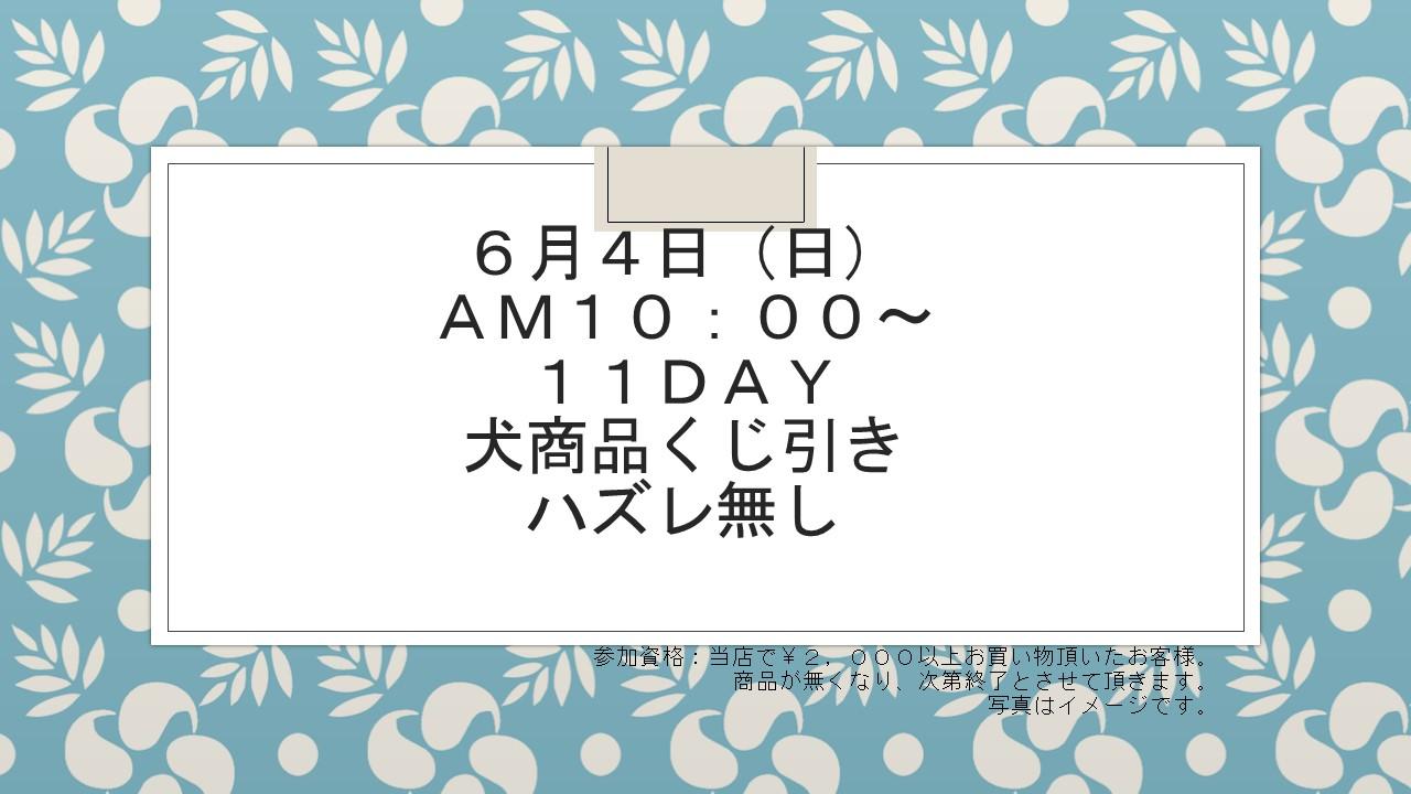 170530 イベント告知_e0181866_17124052.jpg