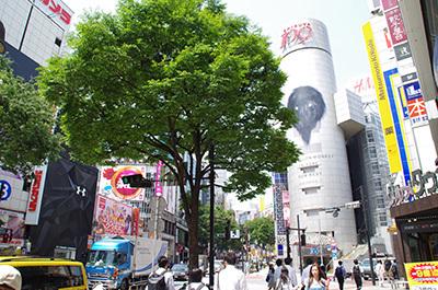 5月30日(火)今日の渋谷109前交差点_b0056983_18002332.jpg