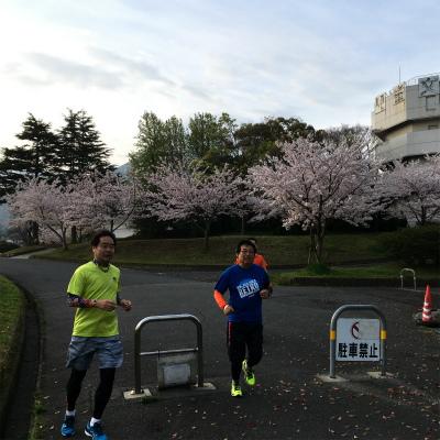 なかなか咲かなかった今年の桜_f0220089_17104235.jpg