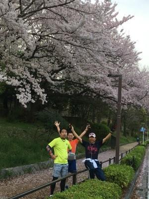 なかなか咲かなかった今年の桜_f0220089_17104963.jpg