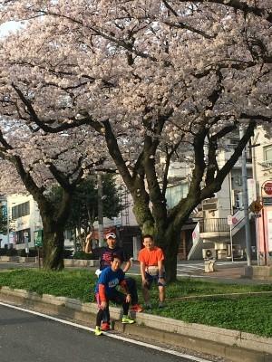 なかなか咲かなかった今年の桜_f0220089_17105871.jpg