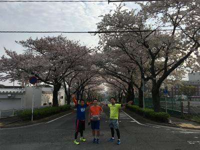 なかなか咲かなかった今年の桜_f0220089_17110127.jpg